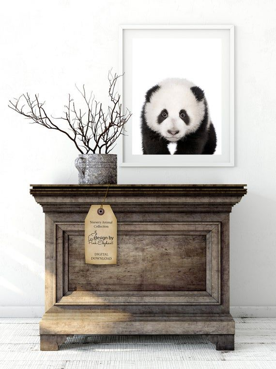 Baby Panda Print For Nursery Decor, Baby Animal Photo Nursery Wall Art, PRINTABLE Wall Art, Cute Bab #babypandas