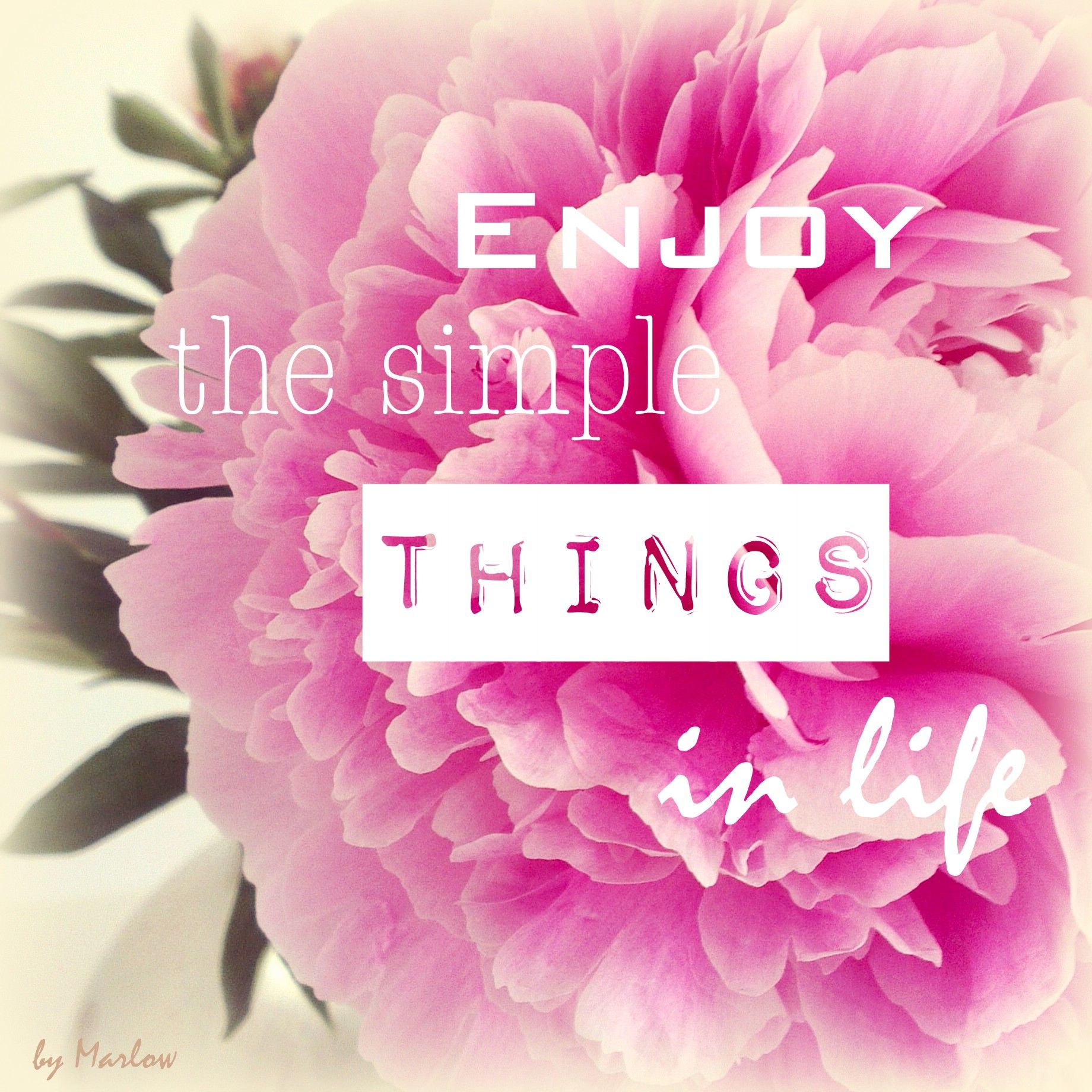 Enjoy The Simple Things In Life Quote Quotes Pinterest