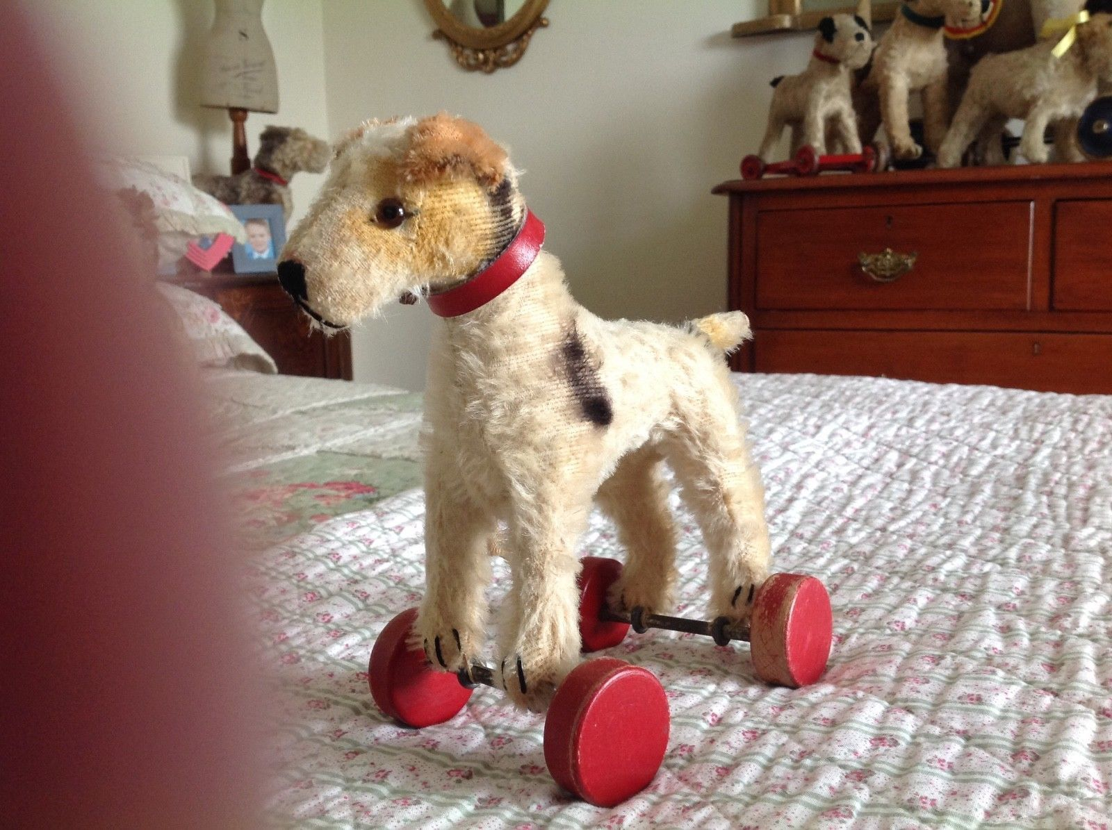Vintage steiff fox terrier,fox terrier toy dog on wheels
