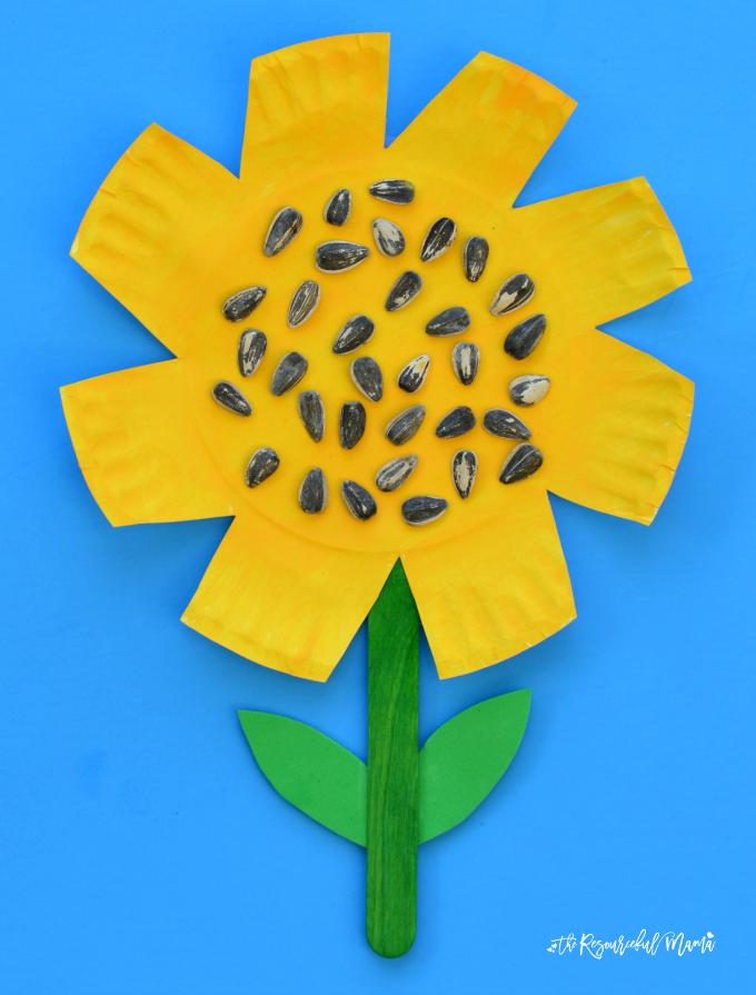 Paper Plate Sunflower Craft Paper Plate Crafts Pinterest
