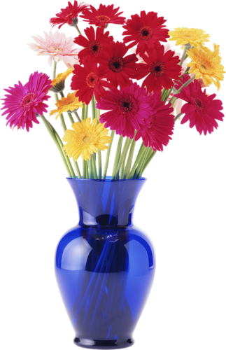 Vase A Fleur Journalphoto