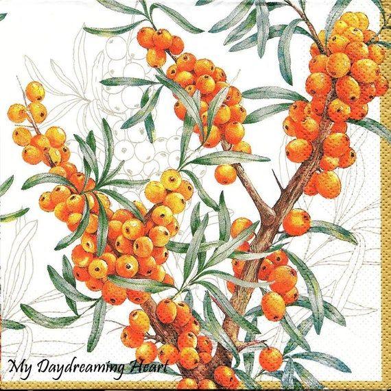 Decoupage Paper Napkins Orange Berries Buckthorne Paper Napkin DIY Project Collage Supplies Mixed Media Altered Art Crafts Scrapbooking #papernapkins
