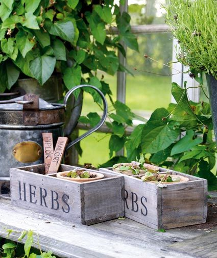 "Nos encantan estas cajas ""Herbs"""