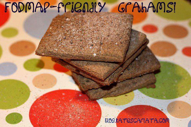Homemade Graham Crackers Fodmap Friendly Recipe Homemade