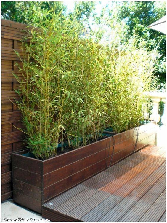 Shamwerks Terrasse Project Terrasse Project Bacs A Bambous