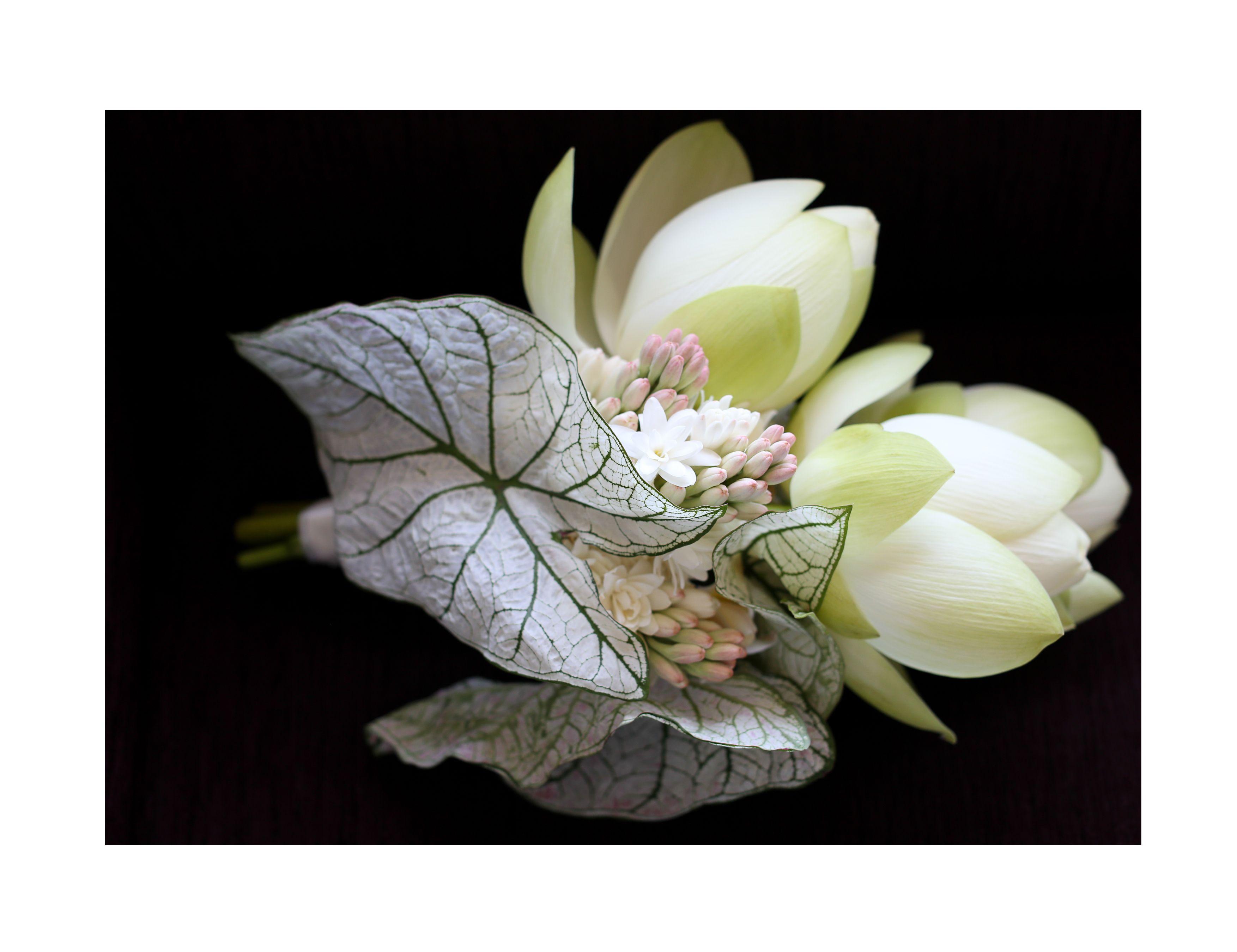 Bridal Bouquet Tuber Roase Sacred Lotus Frangipani Sheridannilssonphotography