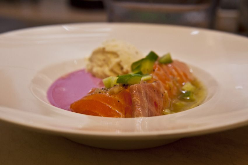 Seviche Salmon, mustard ice cream and violet cabbage sauce