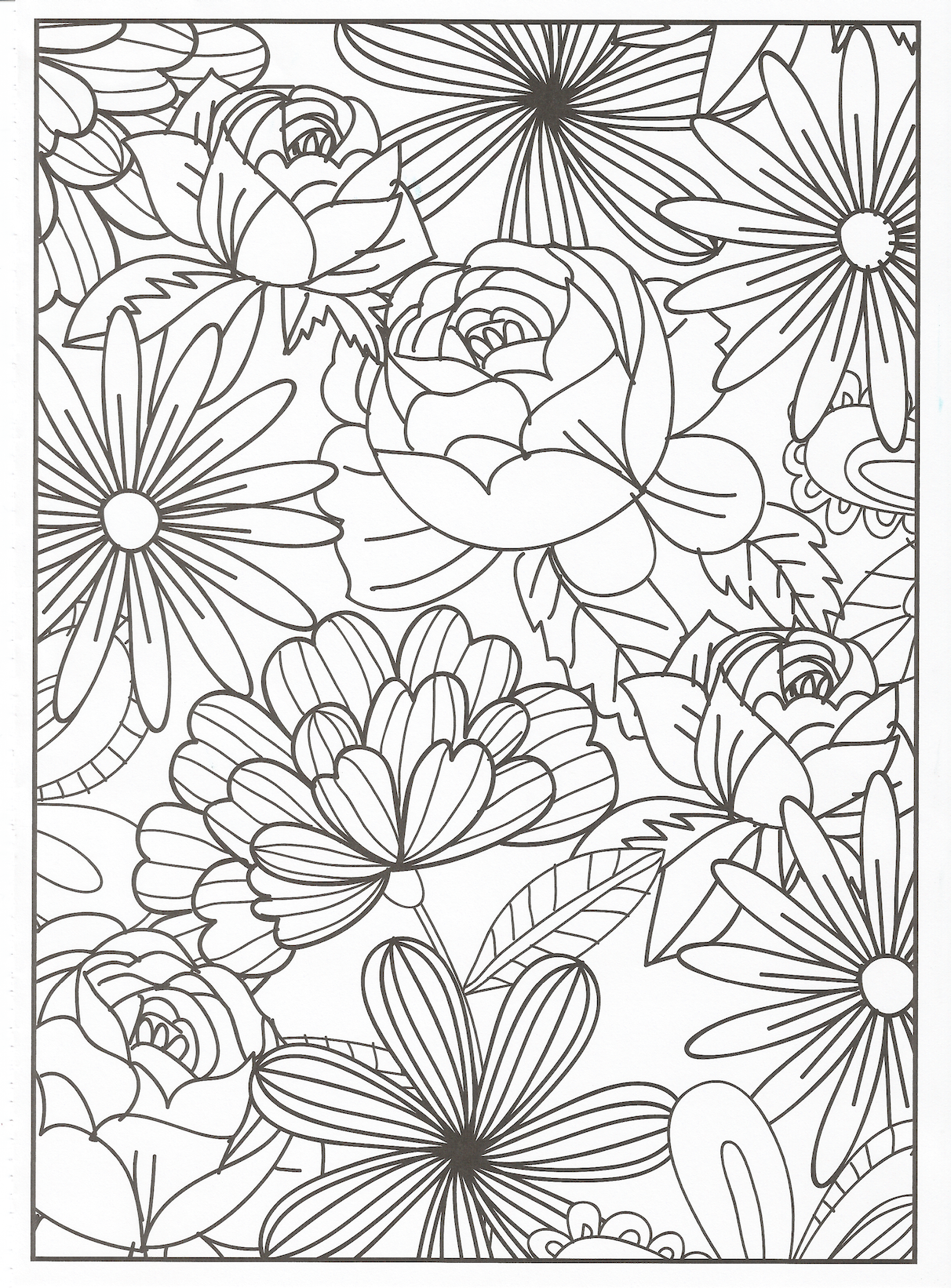 Timeless Creations - Coloring Page | Flower coloring pages ...