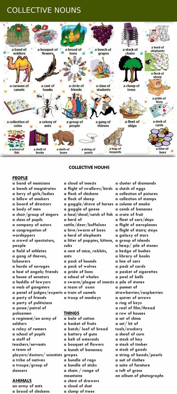 Jorge Luis Adl Kullan C N N Collective Nouns Panosundaki