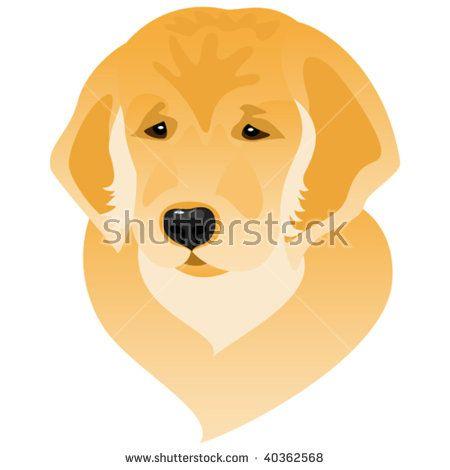 Vector Stylized Illustration Of Golden Retriever Puppy Portrait