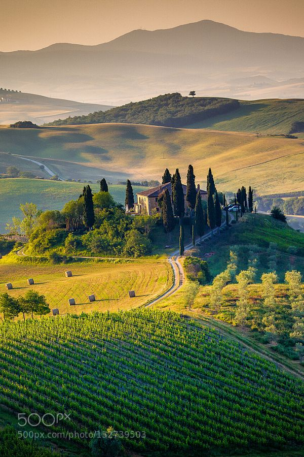 Tuscany portrait by ronnybas