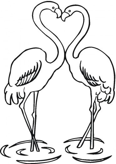 Couple Of Flamingo Coloring Pages Flamingo Color