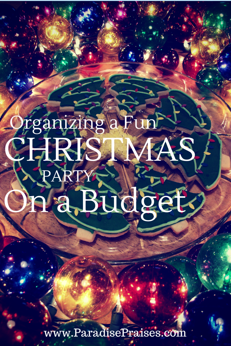 8 Tips For a Fun Christmas Party on a Budget | Pinterest ...