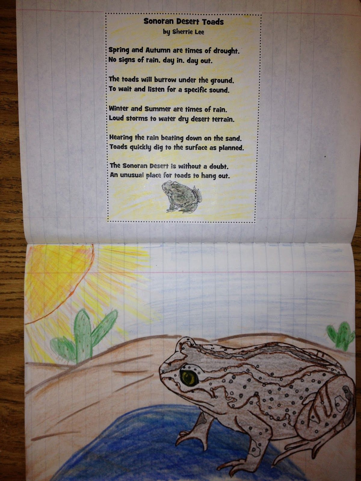 U5w1 Dig Wait Listen A Desert Toad S Tale Under The