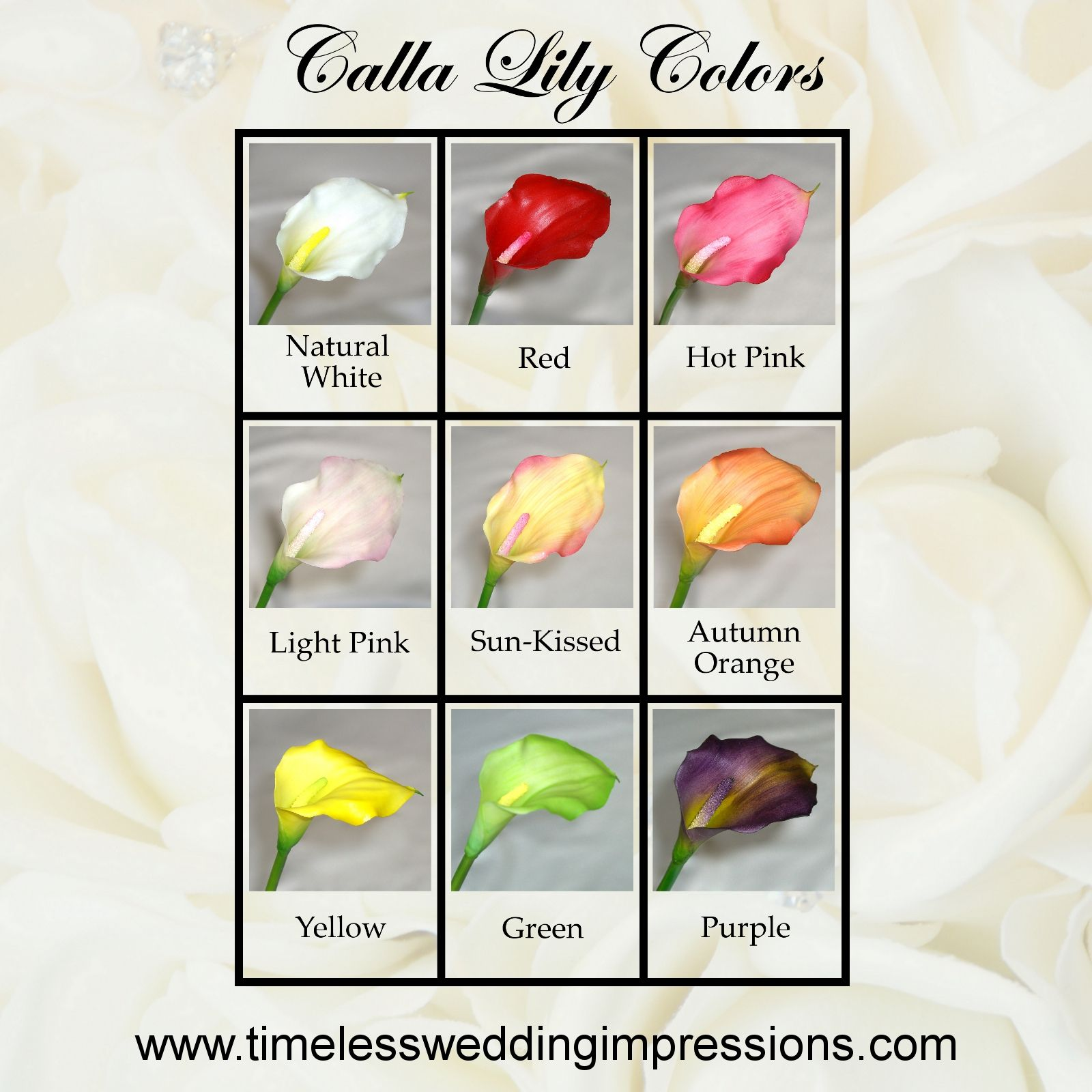 Calla lily summer wedding flowers white red or green my calla lily summer wedding flowers white red or green izmirmasajfo Choice Image