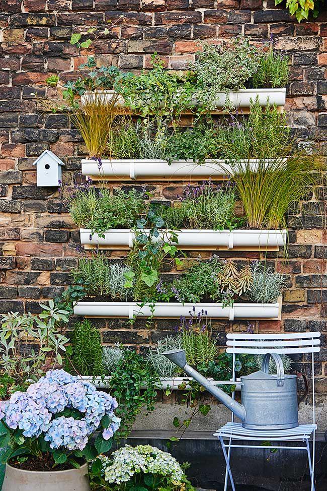 come costruire un giardino verticale fai da te? e' sicuramente più