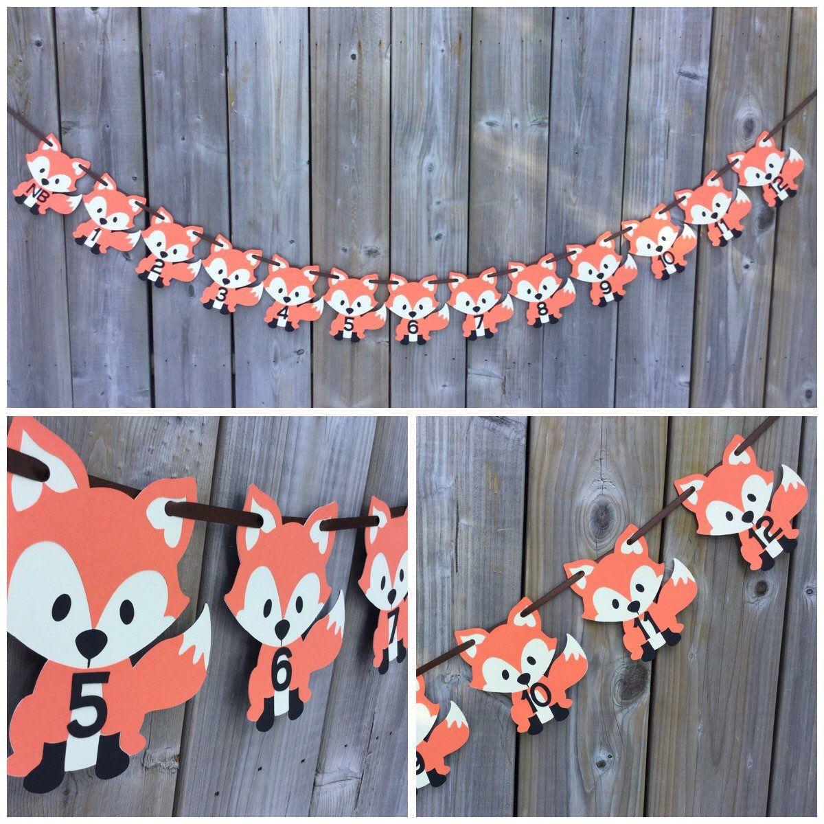 Fox 1st Year Photo banner, First Year Photo Banner, Monthly Photo Banner, Fox banner, Baby's First Year, Fox Birthday decoration by lilcraftychickadee on Etsy https://www.etsy.com/ca/listing/594508855/fox-1st-year-photo-banner-first-year