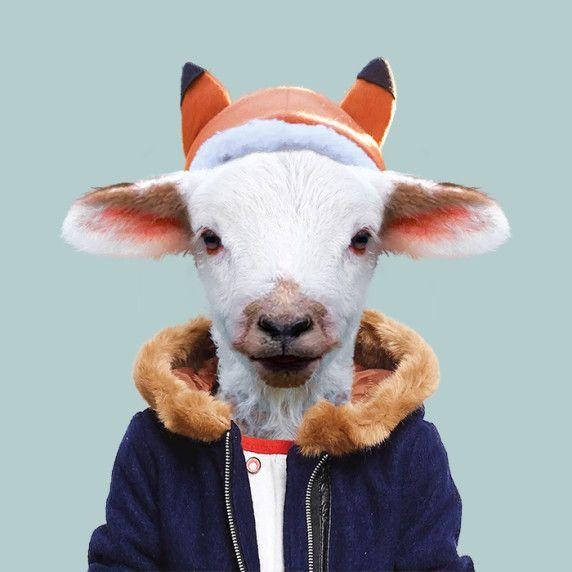 This Artist Spent 3 Years Dressing Zoo Animals Like 7821872 Bunkyoinfo