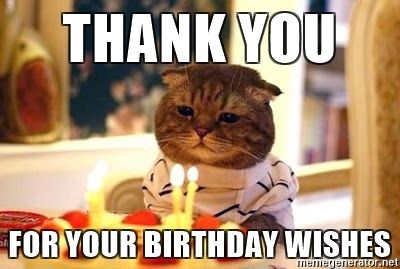 Funny Birthday Thank You Meme : Thank you meme thank you for your birthday wishes birthday cat