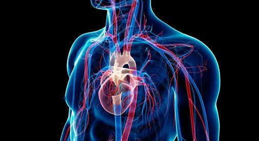 Cardiovascular Health, http://afritradomedic.blogspot.com/2016/03/cardiovascular-health.html
