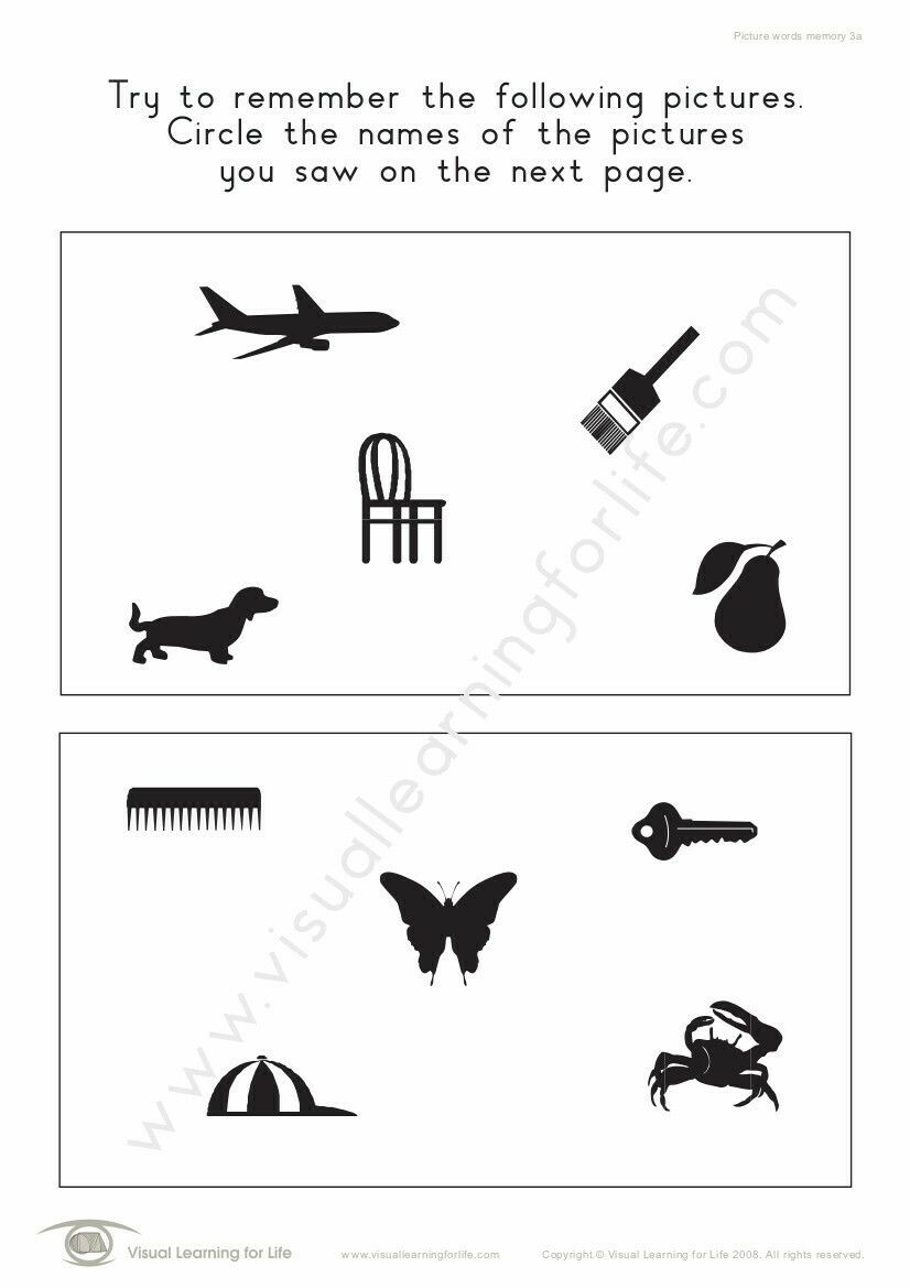 Picture Words Memory Figure Ground Perception Visual Memory Free Printable Puzzles [ 1169 x 826 Pixel ]