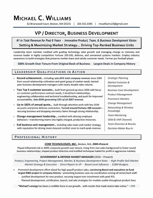 business development executive resume luxury vp professional summary for sample format experienced it professionals cv student
