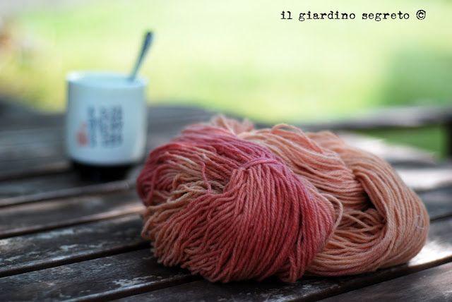 il giardino segreto: Un esperimento: lana alla barbabietola
