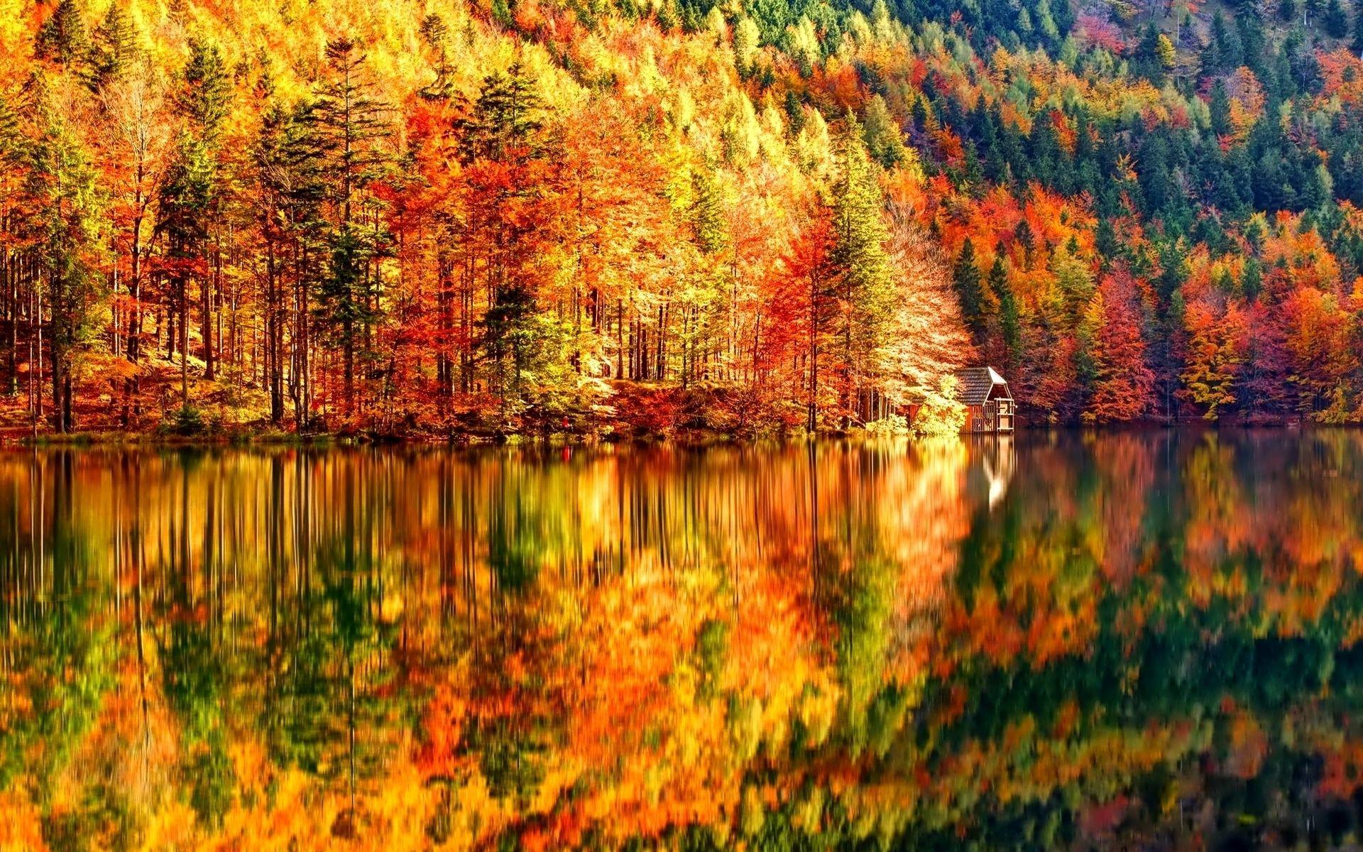 Landscape Photos Fall