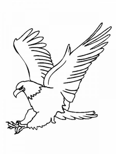 El águila arpía - Cuentos Cortos, Cuentos de animales, Cuentos para ...