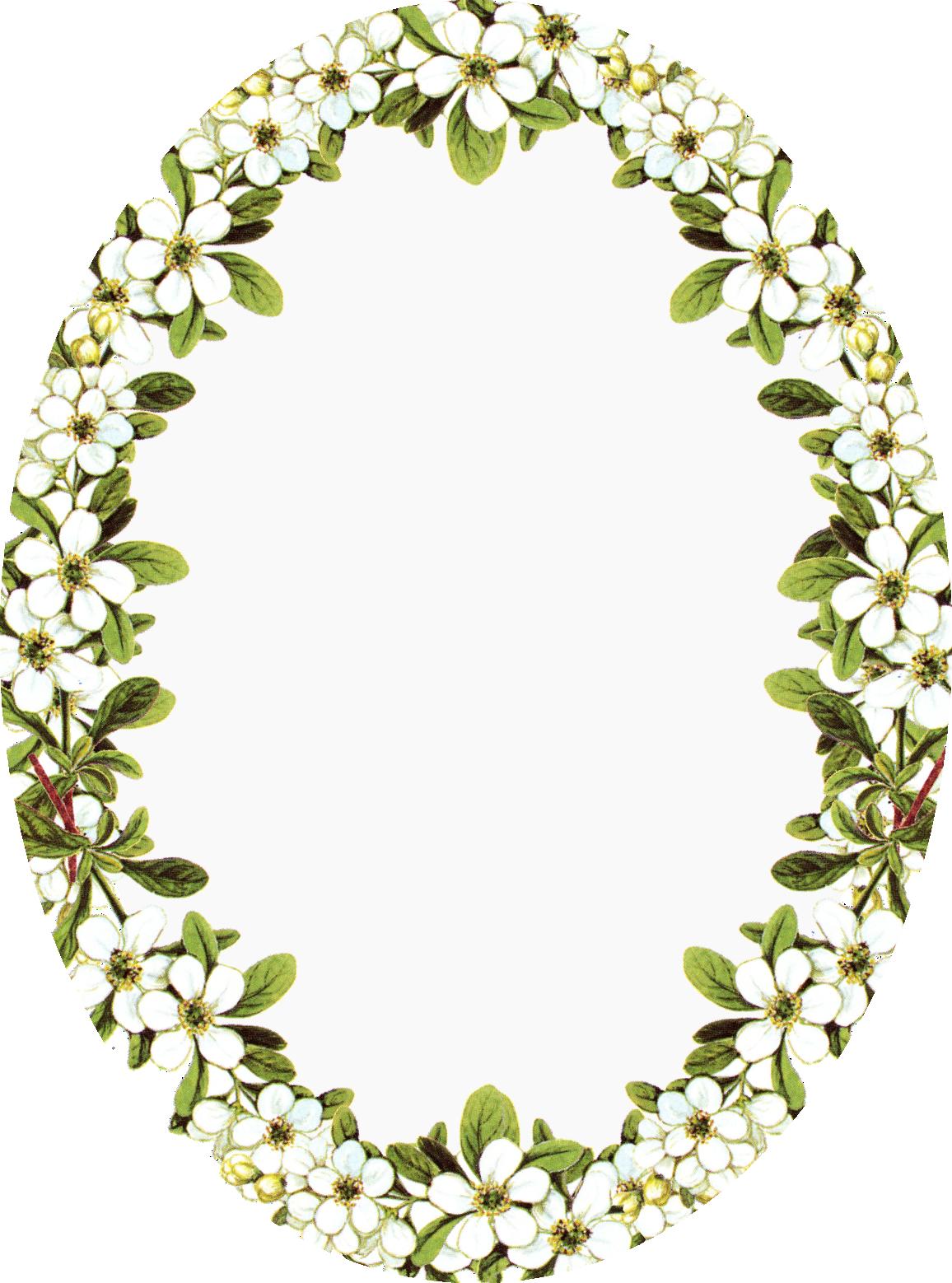 Vintage Frame Clip Art Digital Vintage Flower Frames With Apple Blossoms And Oval Vintage Flower Frame Vintage Picture Frames Flower Frame Png