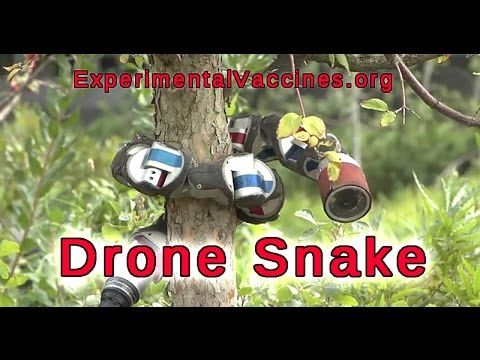 Aquatic Snake Drones Climbing Trees and Spying on You