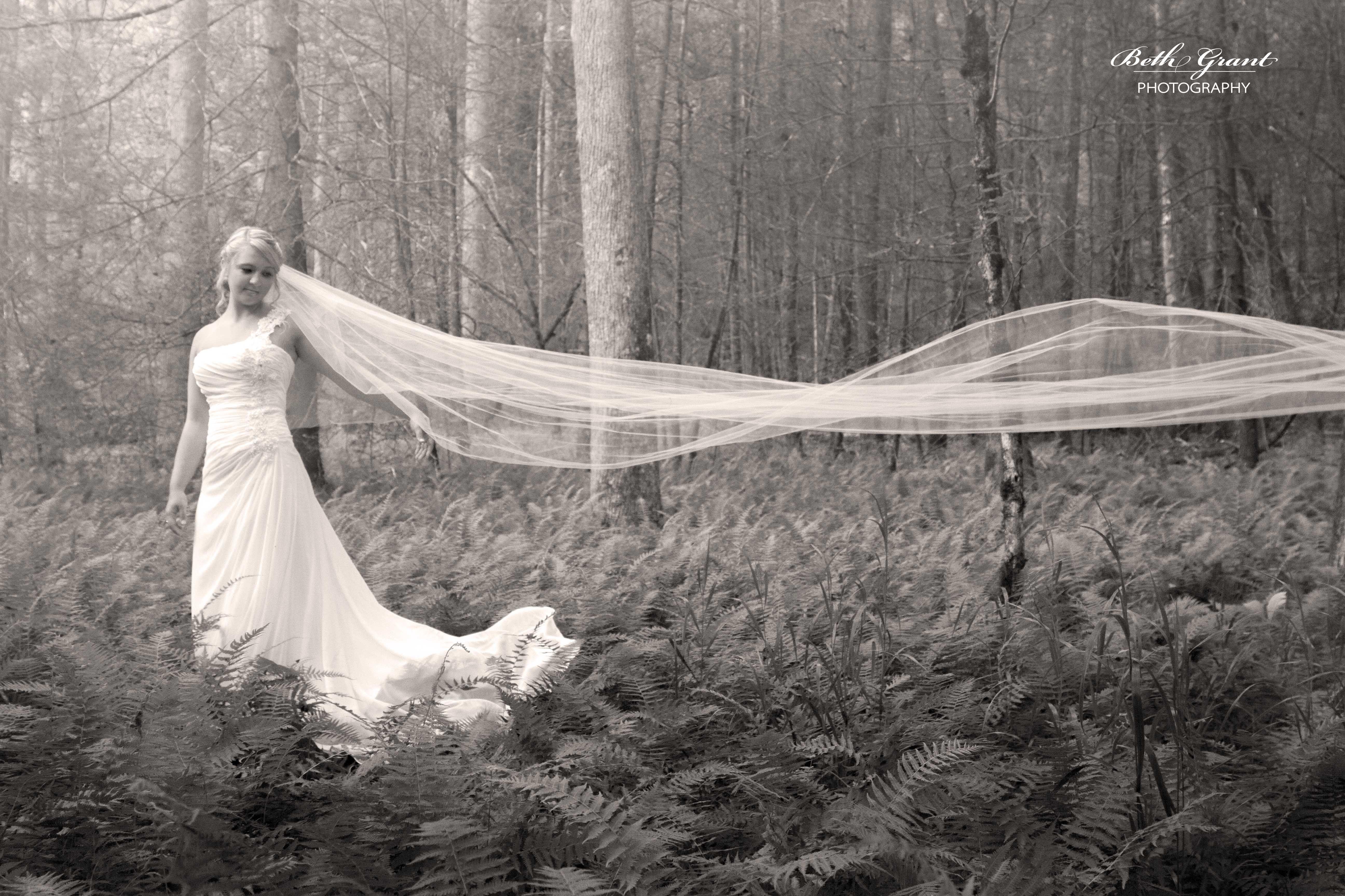 Brevard hendersonville asheville nc bridal portrait