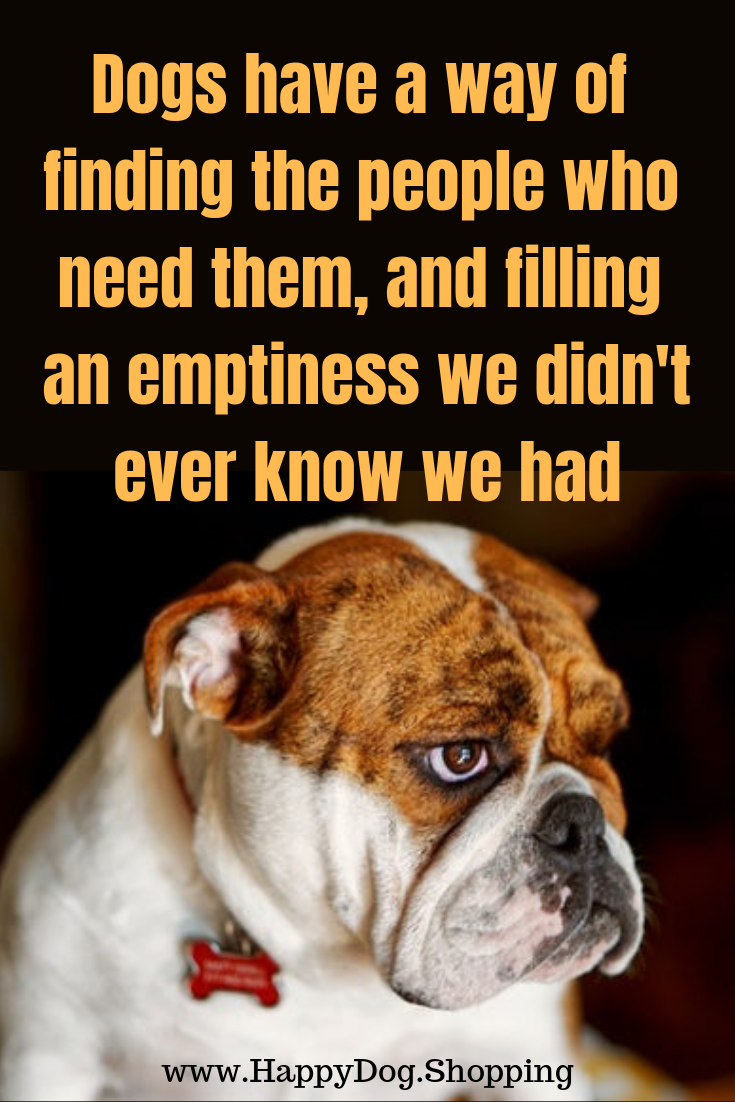 Discover More Dog Quotes Don T Miss Discounts Of Up To 65 Off Dog Supplies Accessories Free Shipping Please Dog Quotes Dog Quotes Love I Love Dogs