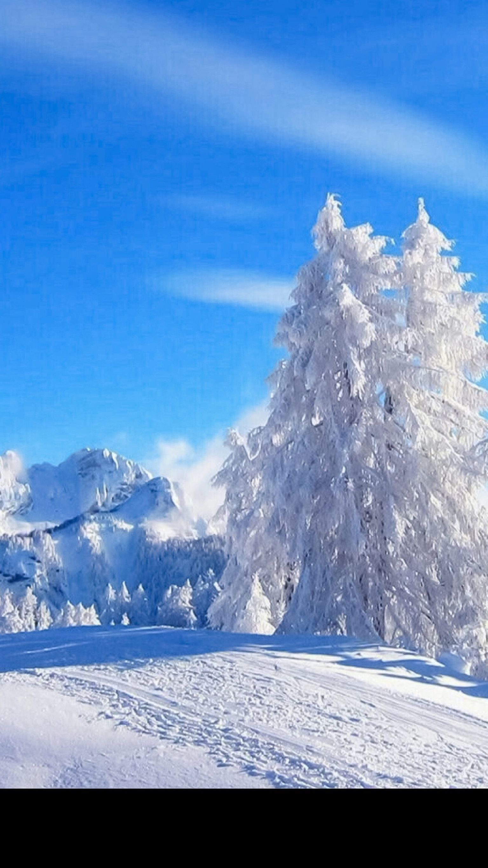 Pin by Bogdan Triebwasser on iPhone W.P. NICE ️ Winter