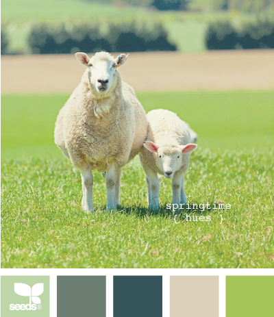 hmmm. now I can paint my place the color of sheep.