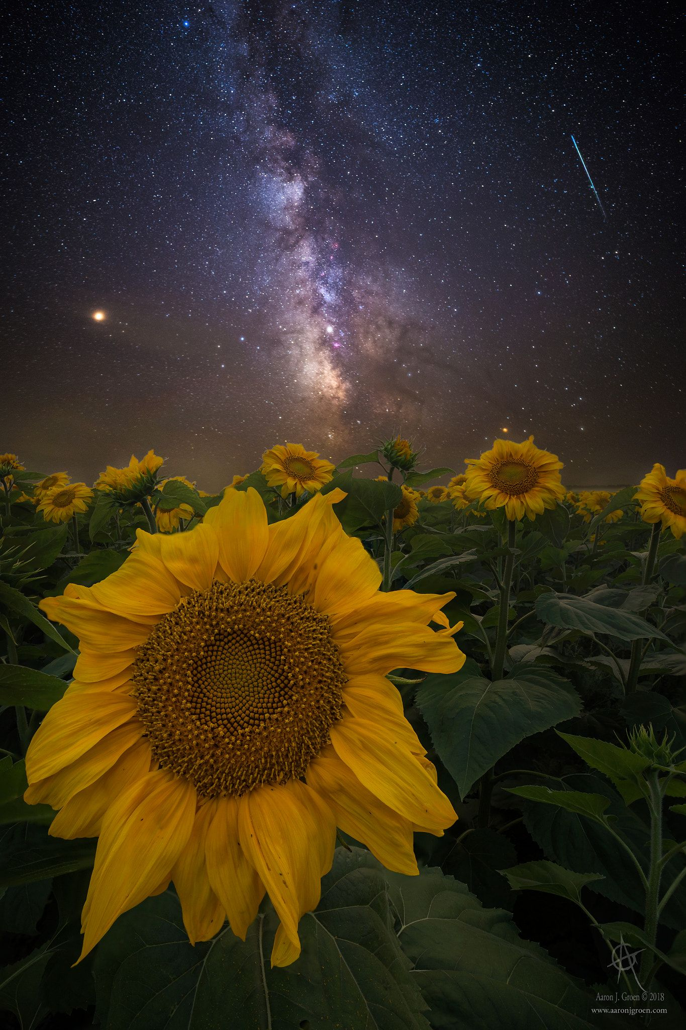 "#Universe Speaking - ""Universally Speaking"" www ..."