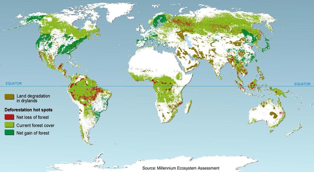 Deforestation Hotspots Rainforest Map Rainforest Biome