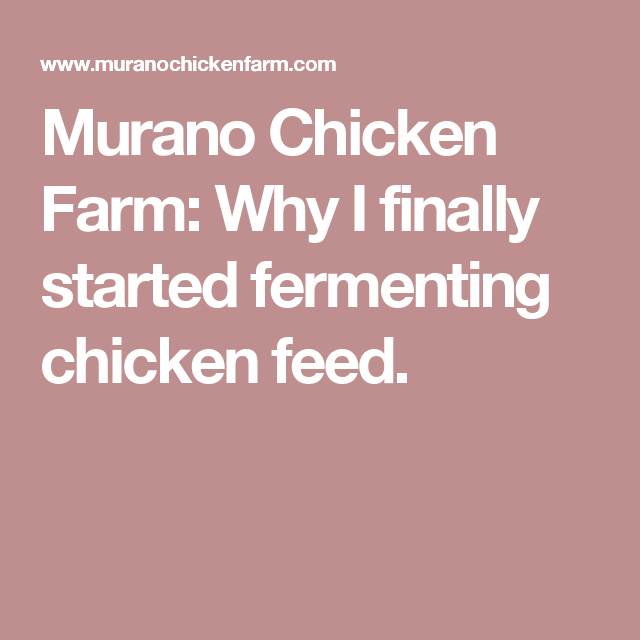 Murano Chicken Farm: Why I finally started fermenting chicken feed.