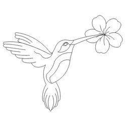 pin von angelika lang auf vogel in 2020   vogel malvorlagen, blumenzeichnung, fadenkunst muster