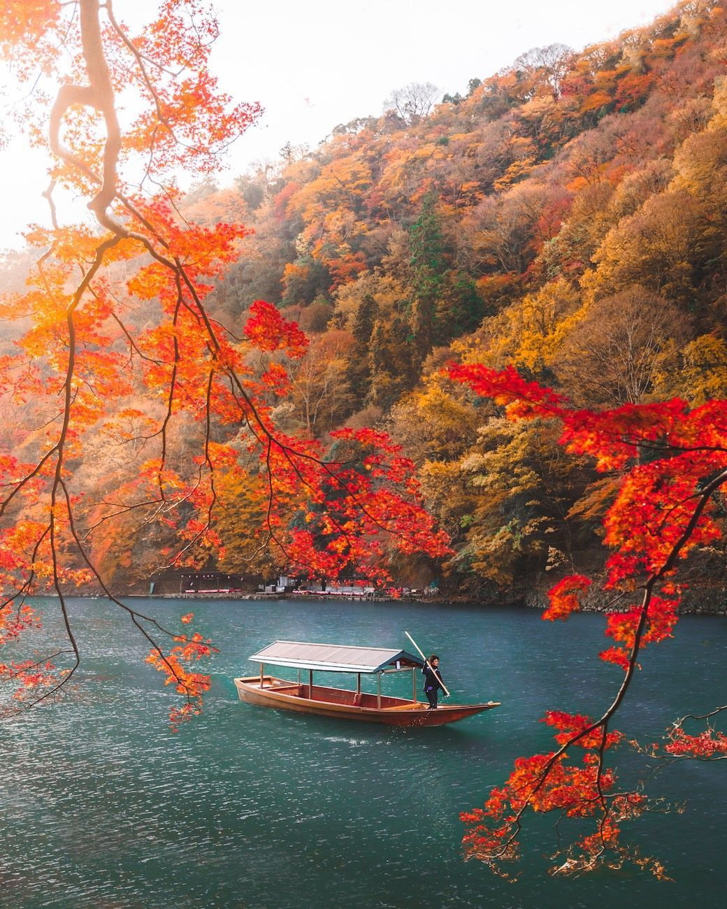 10 images that prove Japan is even more magical during