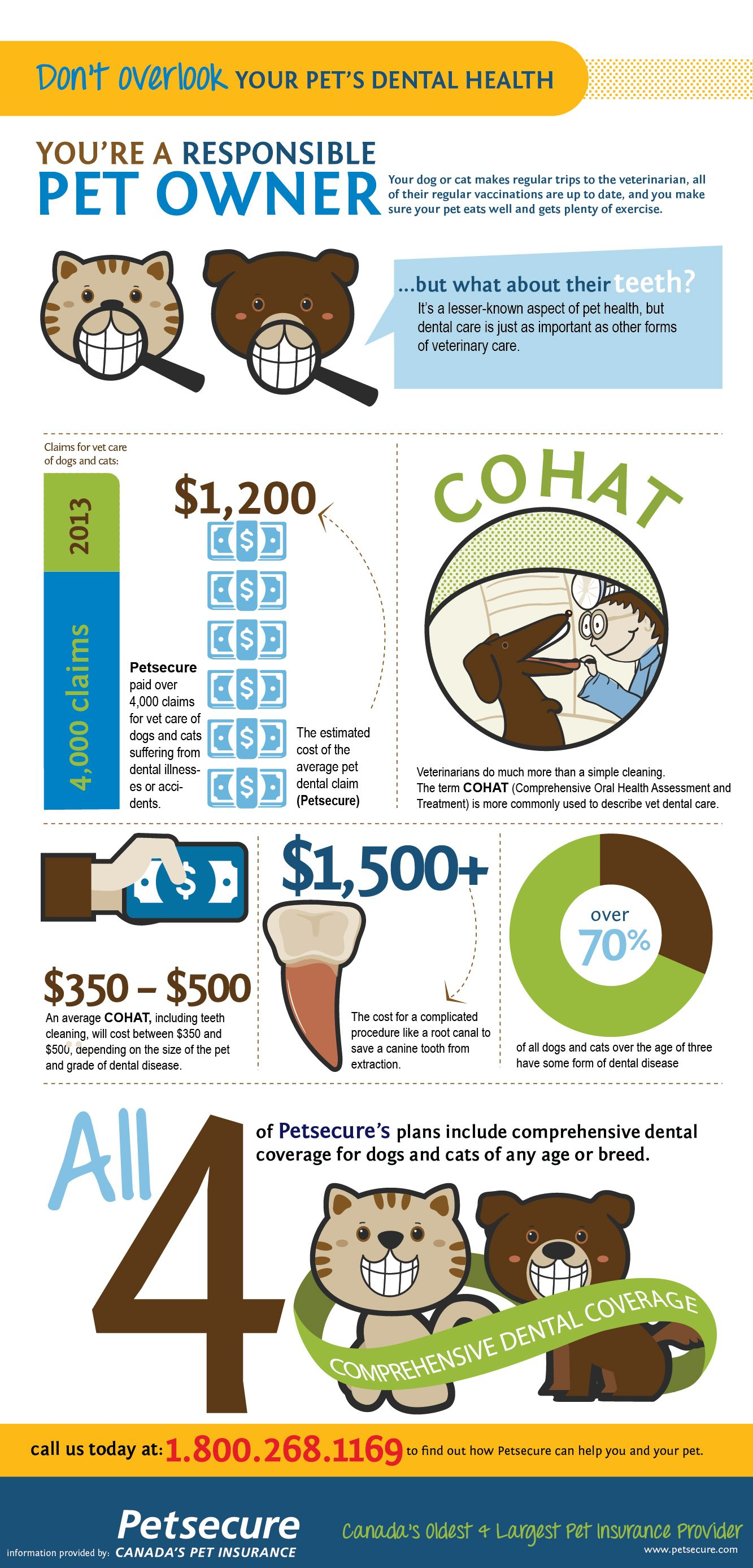 February Is Pet Dental Health Month Take A Look At This Handy Infographic To
