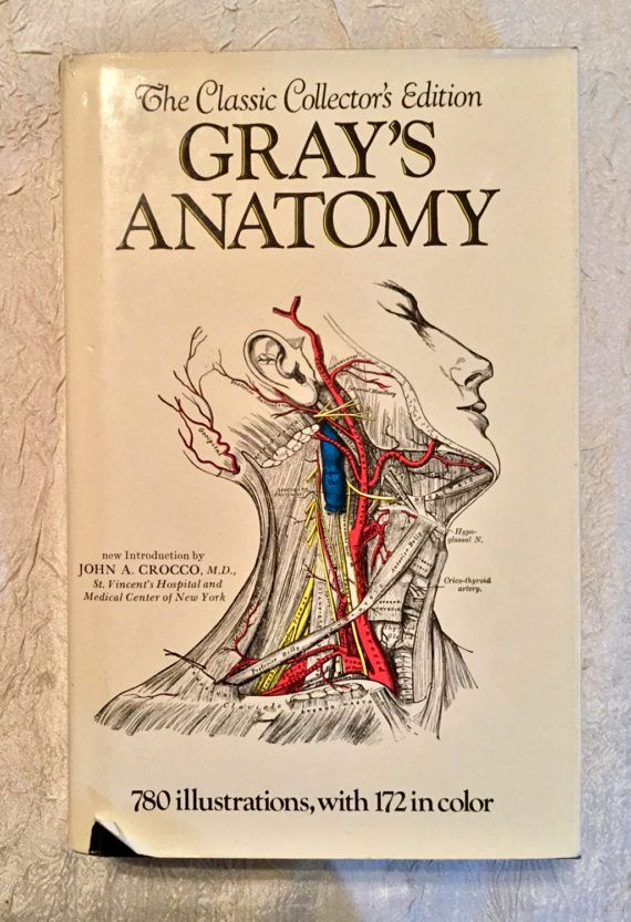 Vintage Hard Back Illustrated Medical Book Dust Cover Etsy Greys Anatomy Book Vintage Medical Anatomy