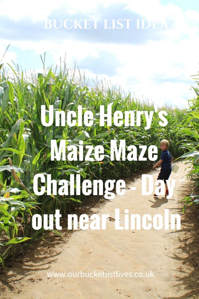 Uncle Henry's Maize maze challenge. Near Lincoln, Lincolnshire. Family day out review