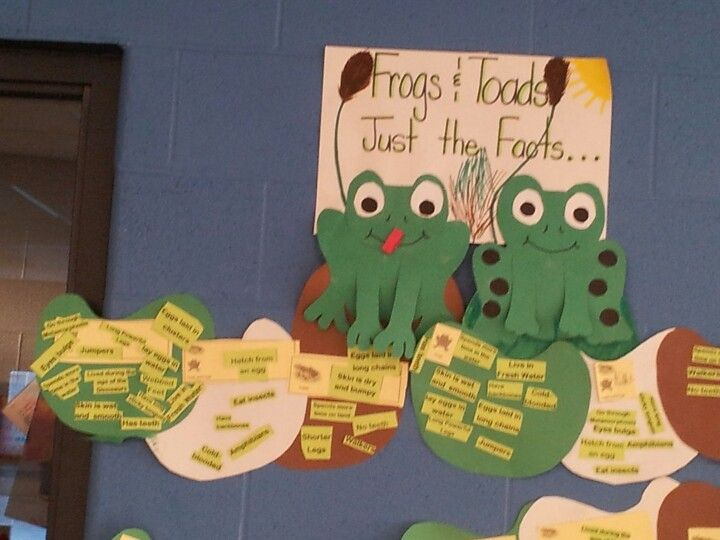 Venn Diagram On Facts About Frogs Toads Reading Pinterest