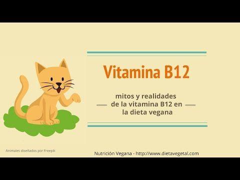 dieta vegetariana con vitamina b12