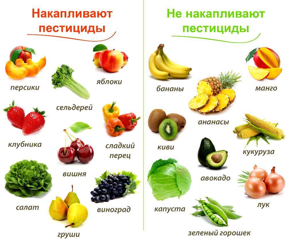 Цветные картинки для детей «Овощи»