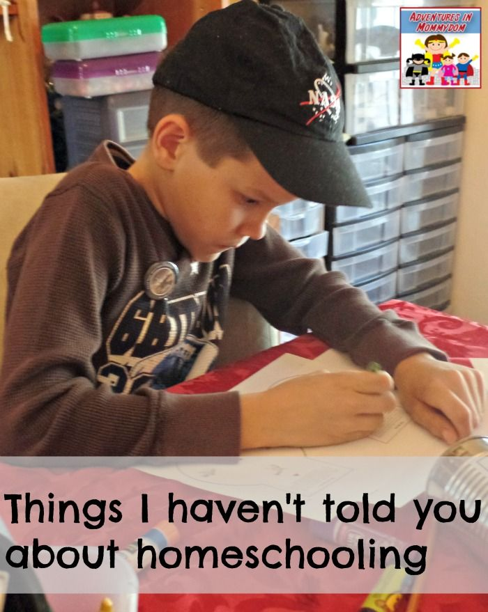 GREAT PERSPECTIVE FROM A TEACHER - What I haven't told you about homeschooling Ticia