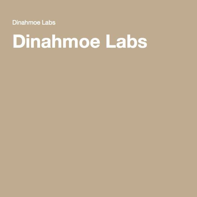 Dinahmoe Labs InteraCtive Pinterest