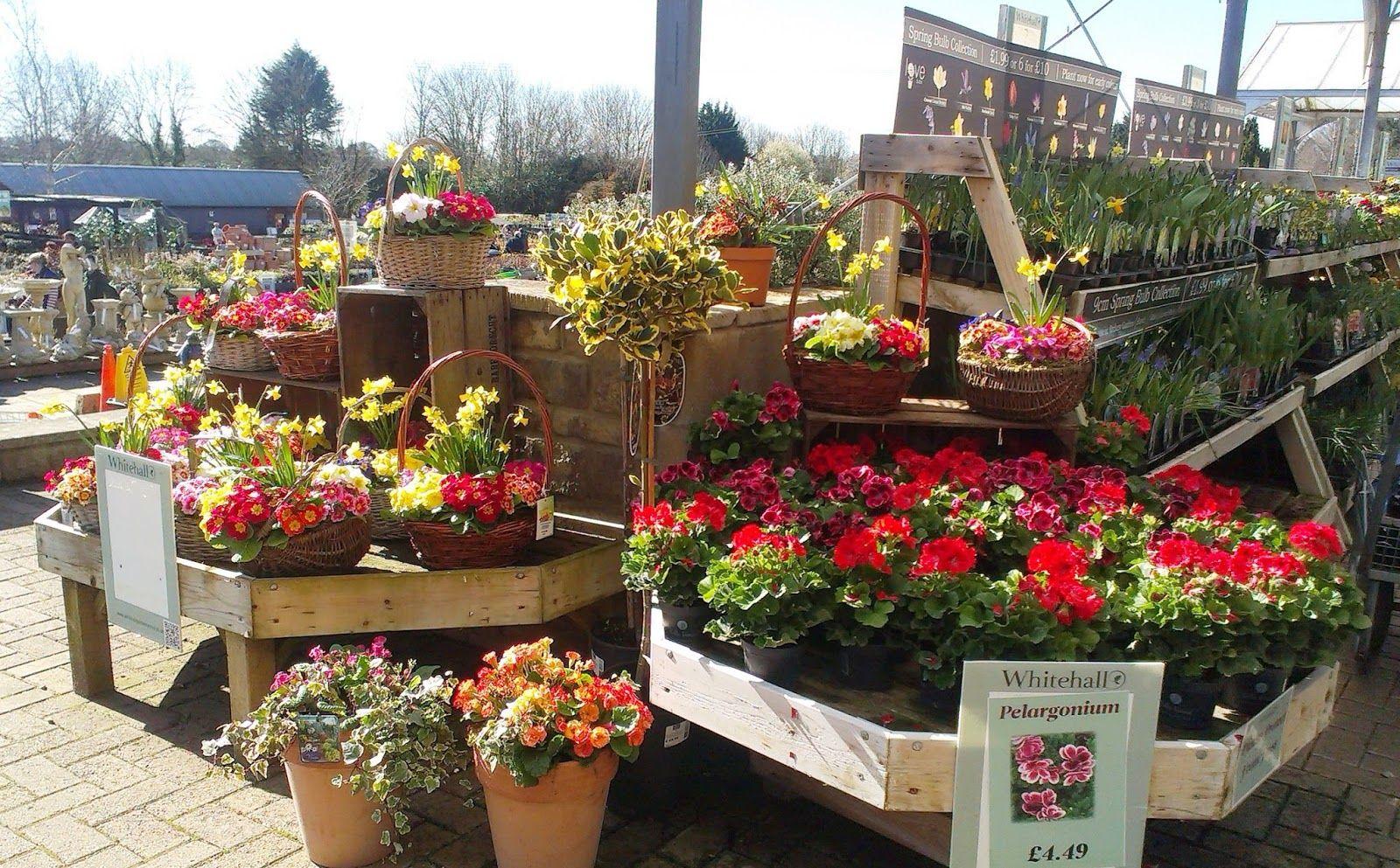 Sunday Sunshine And Garden Centres Aka I Am Turning Into 400 x 300