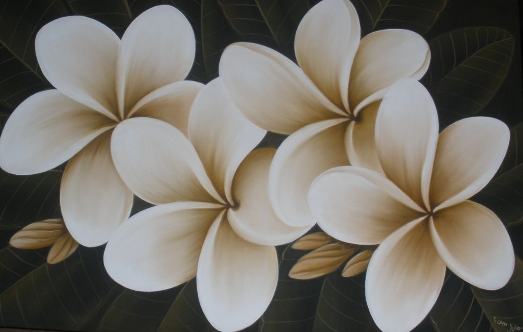 Frangipani Painting Local Tatouage Fleur De Tiare